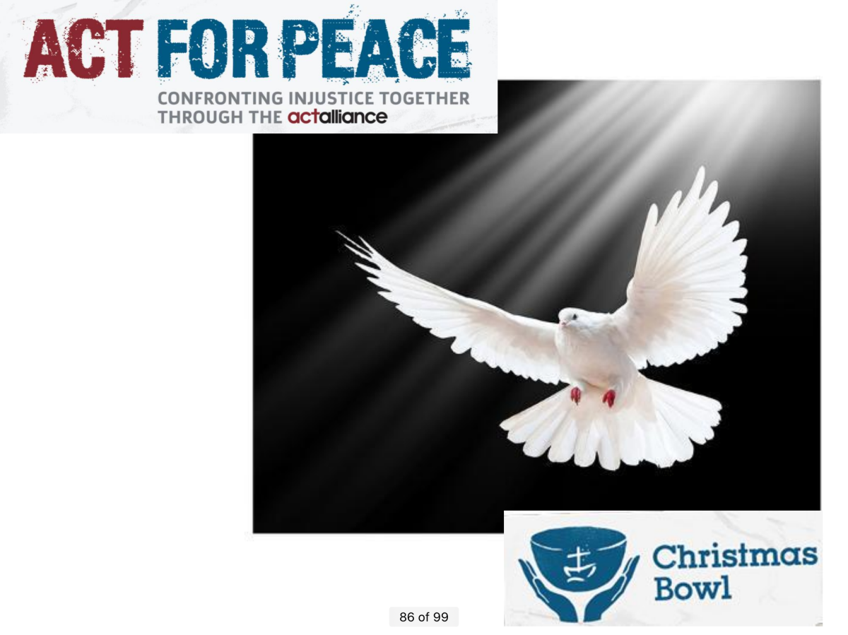 Acting for Peace—through the Christmas Bowl