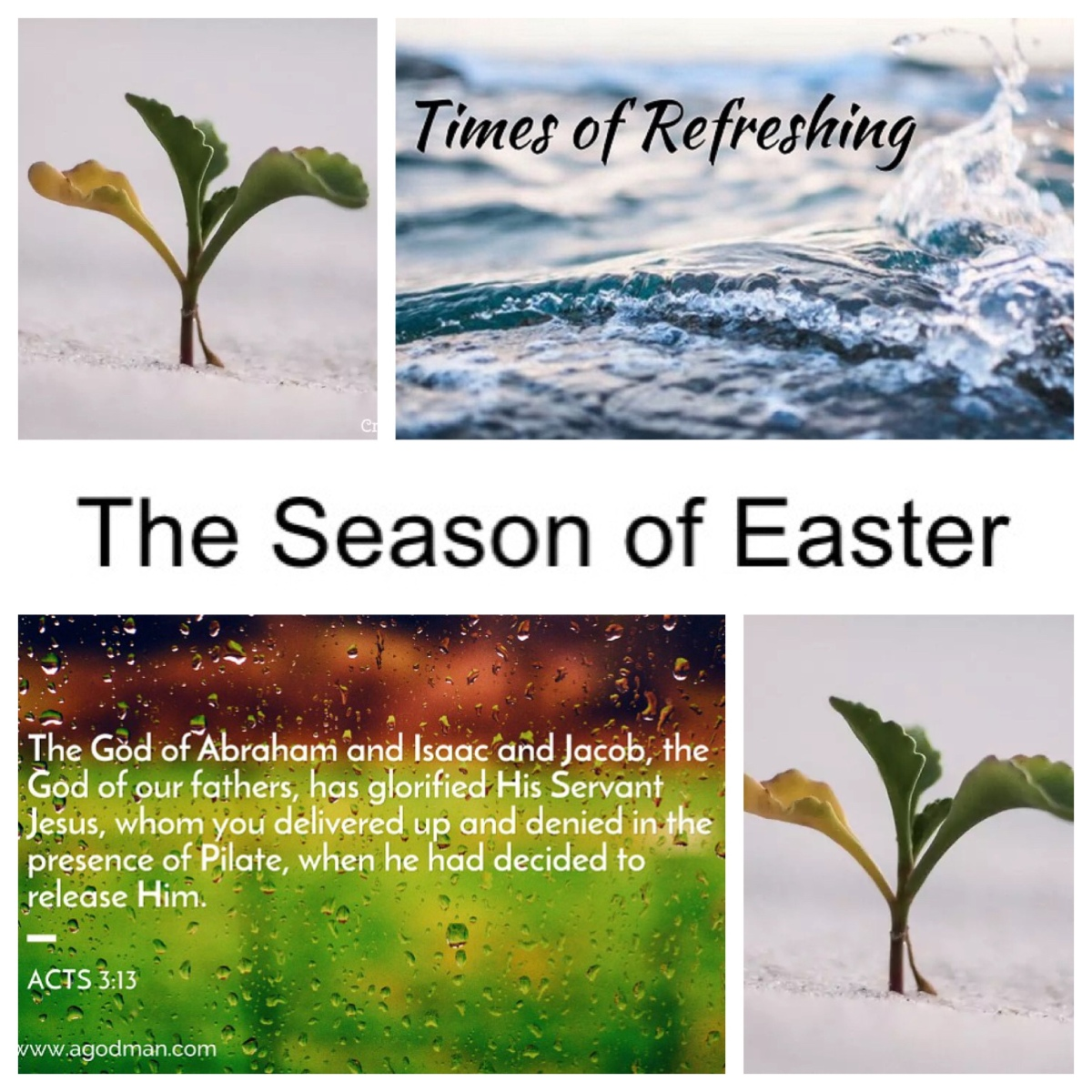 The church in Acts: Times of refreshing (Acts 3; Easter 3B)