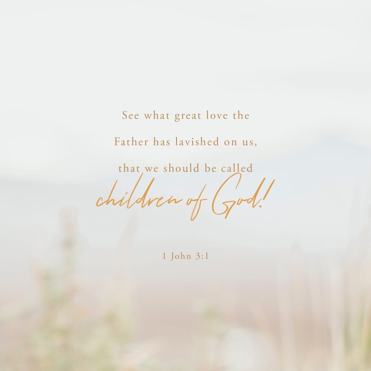 """See what love the Father has given us"": the nature of 1 John (1 John 3; Easter 3B)"