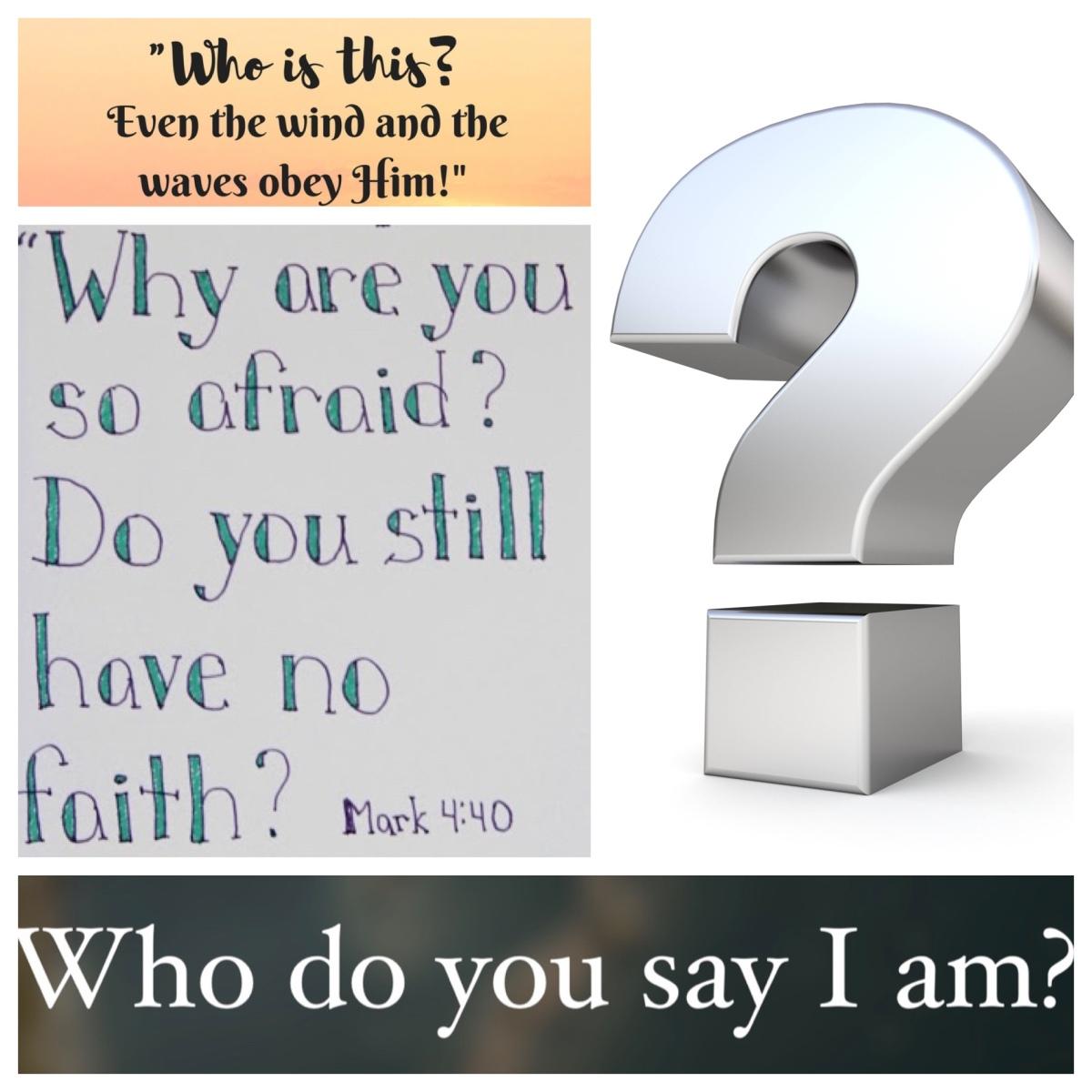 Mark: a Gospel full of questions (Mark 4; Pentecost4B)