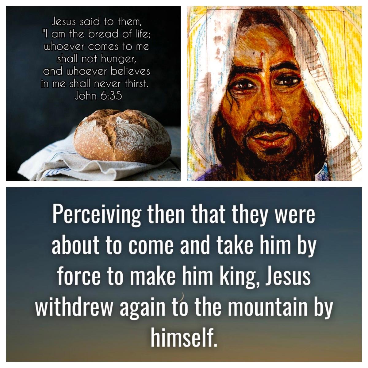 "Misunderstanding Jesus: ""they came to make him a king"" (John 6; Pentecost9B)"