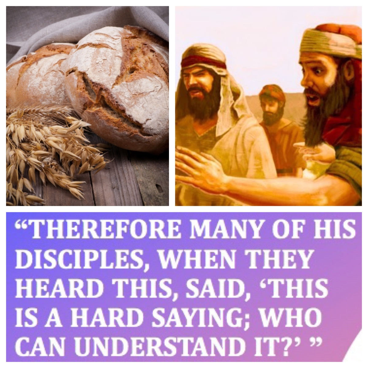 This is a hard saying; who can listen to it? (John 6; Pentecost9B—13B)