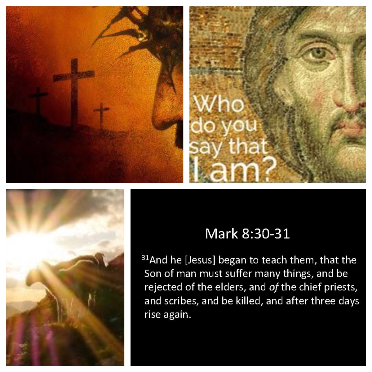 The paradoxes of discipleship (Mark 8; Pentecost16B)